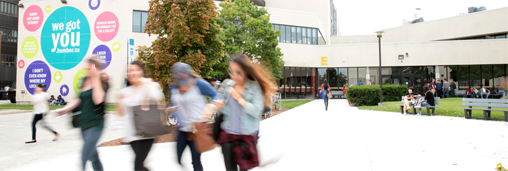 Humber College Sertifika Programları