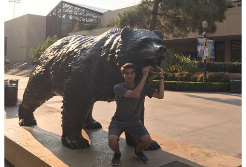 UCLA Summer Session Öğrenci Tavsiyeleri