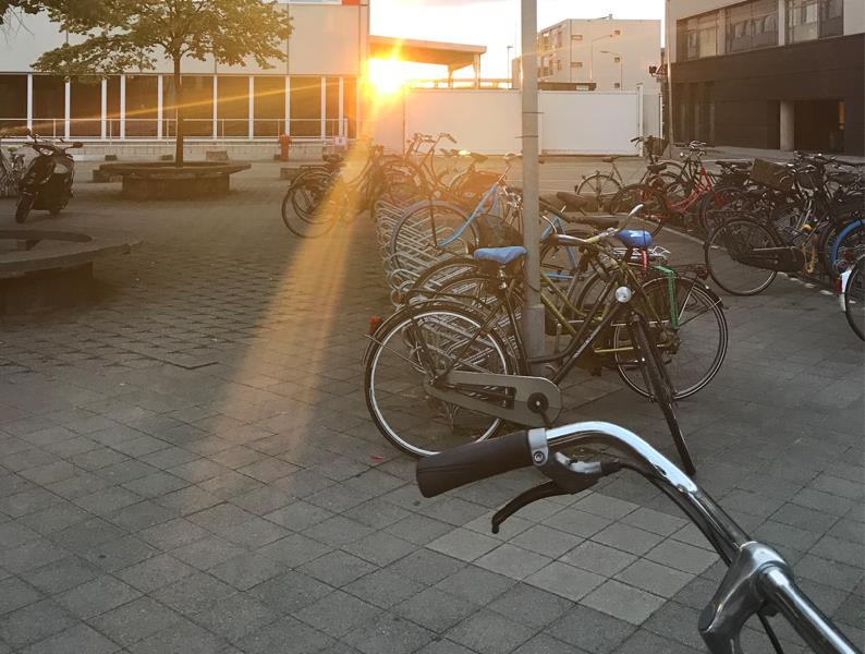 Hollanda'da Üniversite Okumak İçin Gerekenler